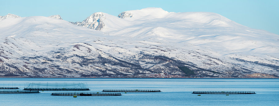Fish Farm below a snowy mountain range