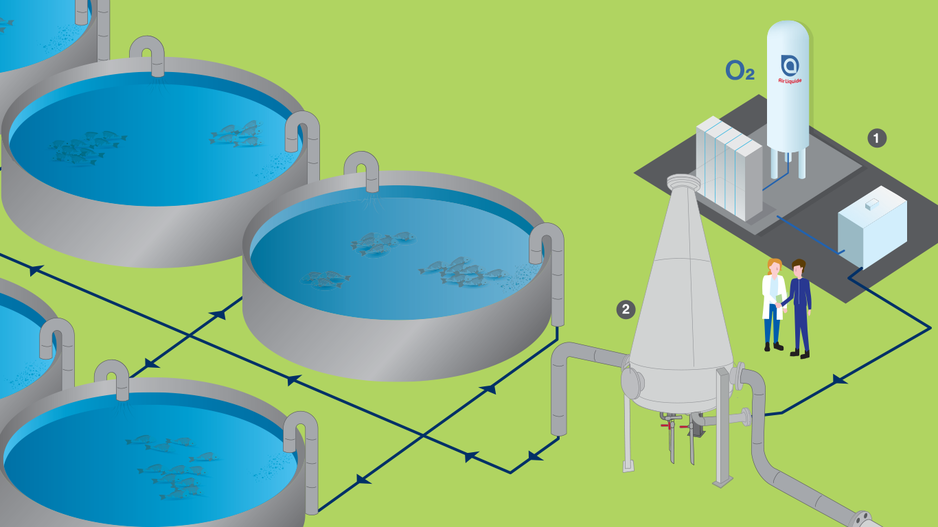 Air Liquide fish farming process example